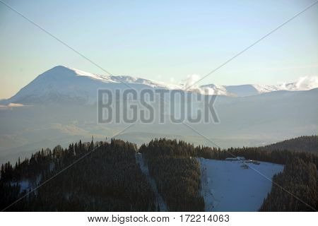 Beautiful fir trees covered with snow on the background of sunlit mountains Carpathians, Bukovel