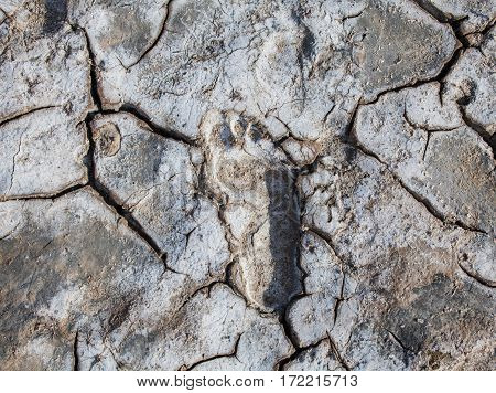 Footprint on the cracked dry ground. Close-up.