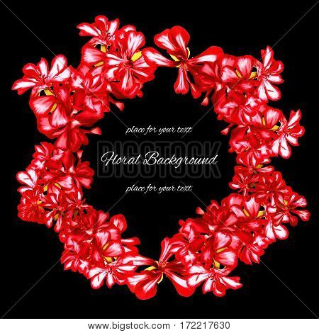 Background Texture Made Of  Geranium And Place For Text