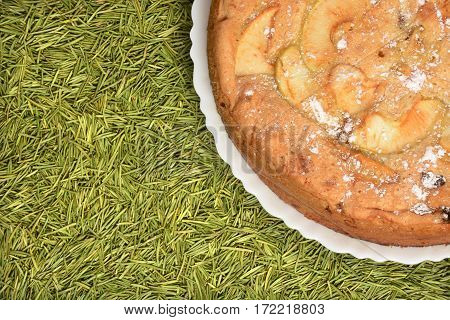 Closeup apple pie with raisins on green spruce or fir tree needles background