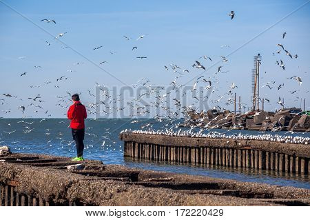 People With Flying Seagulls On The Shore Of The Black Sea, Poti, Georgia