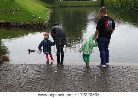COPENHAGEN, DENMARK - JUNE 29, 2016: Unknown family are feeding the ducks in the castle moat Rosenborg Castle in rainy weather.