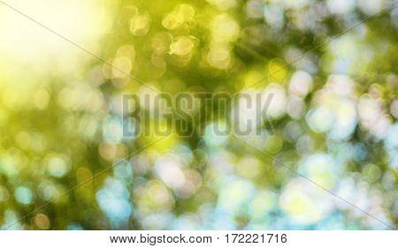 Abstract blurred summer background with bokeh and sun rays