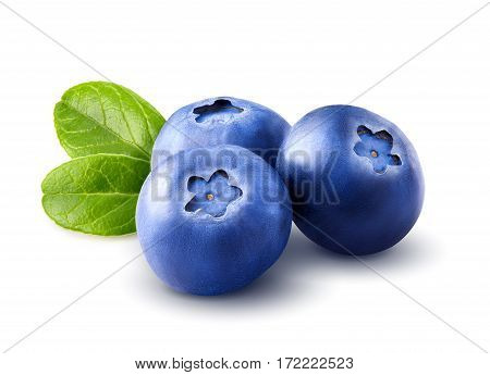 Three blueberries. Berry isolated with leaves isolated on white background. Clipping path. Close up. Macro.