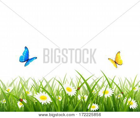 Spring or summer background, two butterflies flying above the grass with flowers and ladybugs, illustration.
