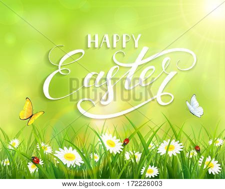 Green nature Easter background with a butterfly flying above the grass and flowersб lettering Happy Easter and sun beamsб illustration.
