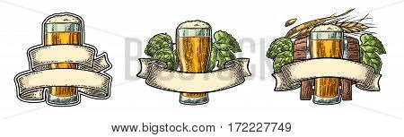 Glass beer with ribbon barrel ears of corn and hop branch. Vector engraved color vintage illustration isolated on white background.