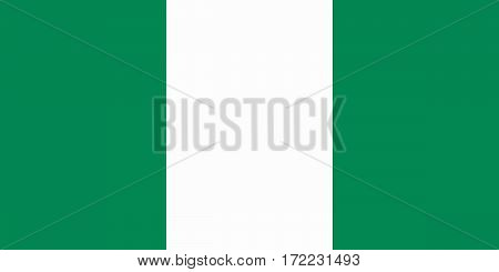 flat nigerian flag in the colors gree and white