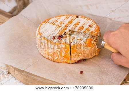 Woman's hand cutting whole wheel of soft French German cheese with orange rind with mold on parchment paper wood cutting board rustic kitchen interior