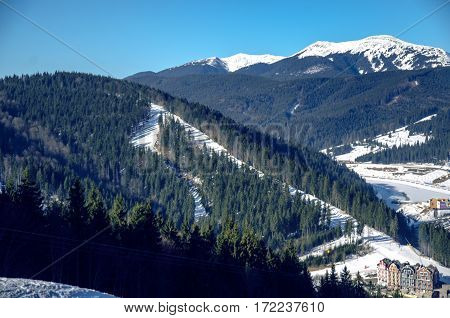 Mountain snow spruce Bukovel nature blue sky