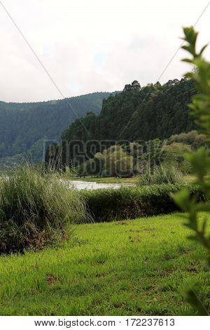Landscape of Furnas lake. Sao Miguel Island, Azores, Portugal