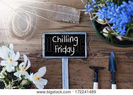 Sign With English Text Chilling Friday. Sunny Spring Flowers Like Grape Hyacinth And Crocus. Gardening Tools Like Rake And Shovel. Hemp Fabric Ribbon. Aged Wooden Background