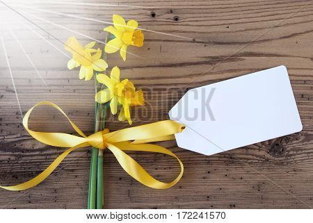 Label With Copy Space For Advertisement. Sunny Yellow Spring Narcissus Or Daffodil With Ribbon. Aged, Rustic Wodden Background. Greeting Card For Spring Season