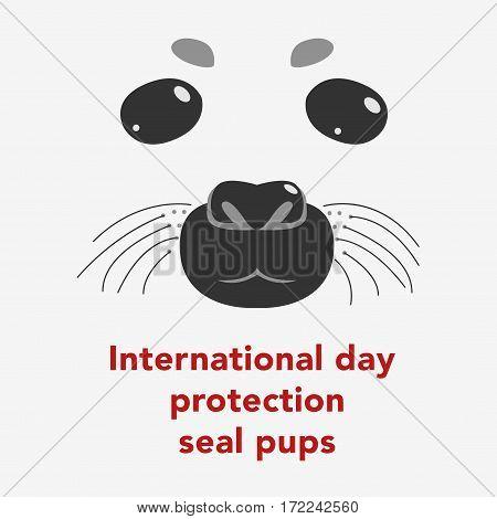 Seal Pups Vector