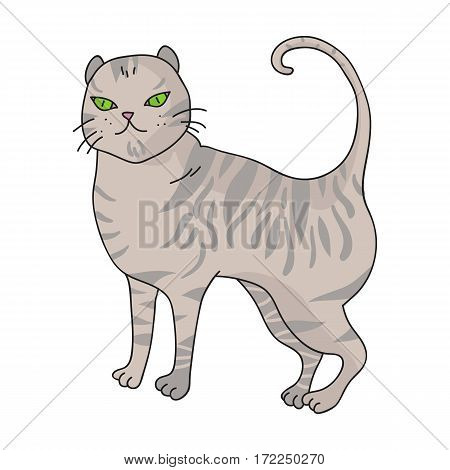 British Shorthair icon in cartoon design isolated on white background. Cat breeds symbol stock vector illustration.