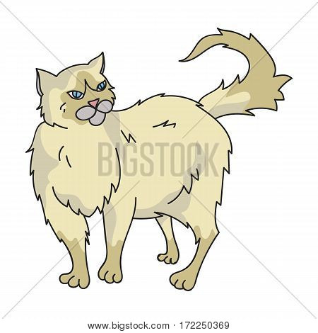 Persian icon in cartoon design isolated on white background. Cat breeds symbol stock vector illustration.
