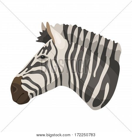 Zebra icon in cartoon design isolated on white background. Realistic animals symbol stock vector illustration.