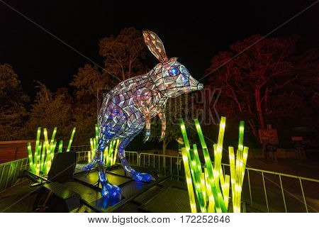 Vivid Sydney At Taronga Zoo. Wild Animals Light Sculptures