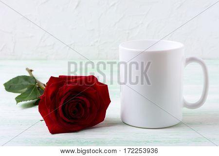 White coffee mug mockup with dark red rose. Empty mug mock up for design presentation.