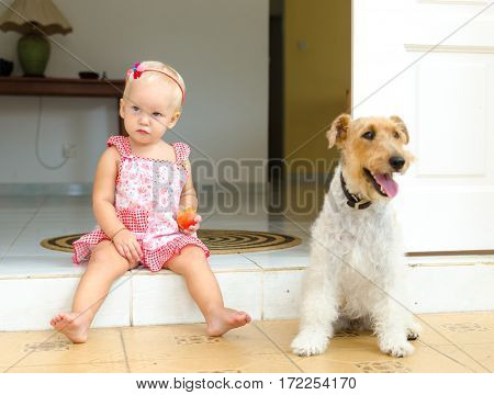 Toddler and dog. The little girl and her pet.