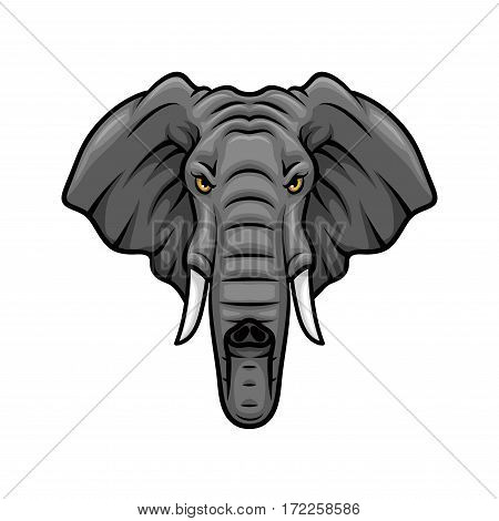 Elephant vector mascot icon. Head of African or Indian elephant or mammoth animal with tusks and trunk. Isolated emblem design for sport team, safari nature hunting club or tattoo sign