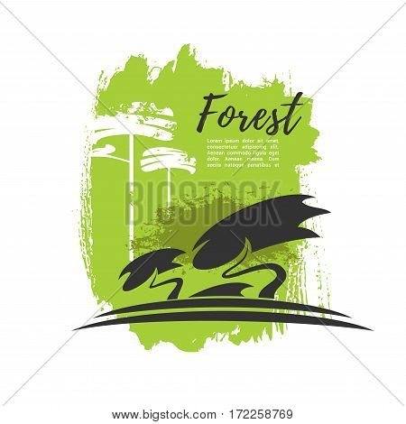 Forest vector poster with green trees and woodland reservation symbols design for outdoor trip or travel adventure, eco environment protection and garbage pollution warning sign