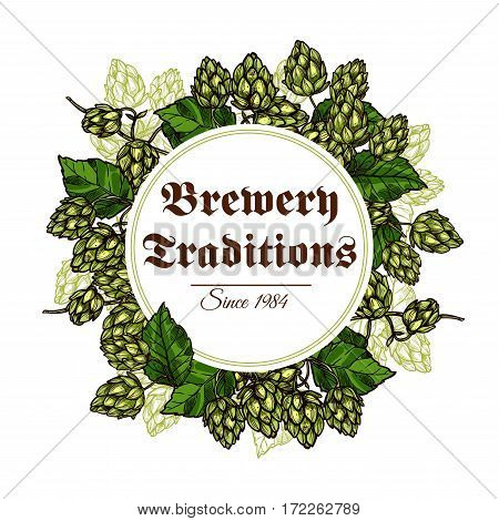 Hop vector poster of hops seed cones and flowers branches and green leaves harvest as flavoring ingredient of beer brewing for brewery company, pub or bar
