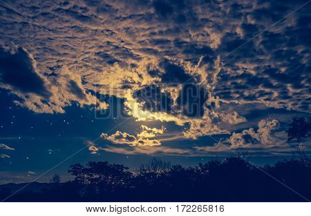 Attractive of amazing dark night sky with many stars and cloudy above silhouette of trees. Outdoor at nighttime with bright moonlight. Pretty nature use as background. Vivid colors.