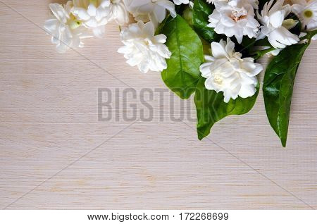 Jasmine (Other names are Jasminum Melati flower Jessamine or Oleaceae Jasmine) flower grouped on wooden board background with blank copy text space