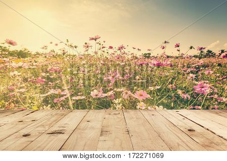 Wood Table And Field Cosmos With Sunlight. Vintage Tone Photo.