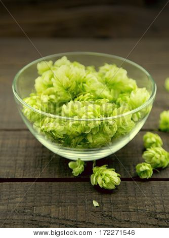 Close up of green ripe hop cones in a glass bowl over dark rustic wooden background. Beer production ingredient. Ingredients for the preparation of organic beer. Brewing.