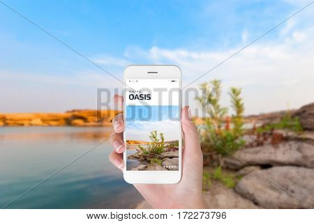 woman using her smartphone for searching the travel information of beautiful oasis. Traveling concept Beautiful blurry oasis background.