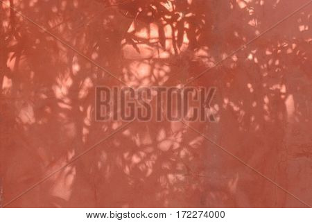 Faded Red Wall With Shadow Of Leaves On It