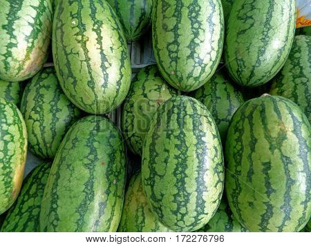 Heap of bright green and dark green stripes rind oval shape ripe Watermelons