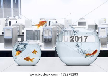 Picture of golden fish jumping to larger aquarium with number 2017 concept of better career
