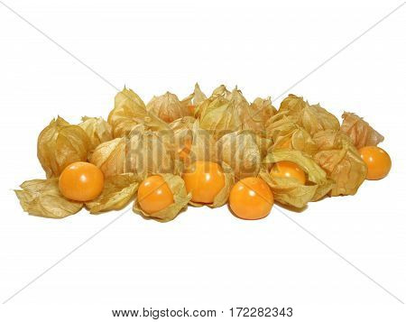 Pile of vibrant yellow ripe Cape gooseberries most with calyx isolated on white background