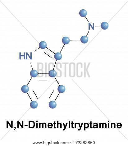 N,N-Dimethyltryptamine is a psychedelic compound of the tryptamines. It is a structural analog of serotonin and melatonin and a functional analog of such as 4-AcO-DMT, psilocybin, and psilocin
