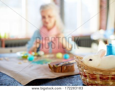 Cute white rabbit sitting in basket with female on background