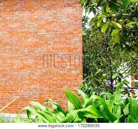 orange brick wall with tree at park.
