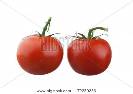 Extreme close-up image of fresh tomatoes on white background