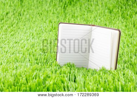 Open Notebook On Green Grass, Business And Education Concept Template