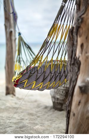 Yellow-black hammock with a pillow is hanging between trees on the beach on the blurry background of the sea and the sky. Closeup low aperture photo. Vertical.