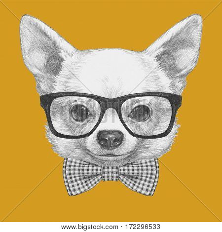 Portrait of Chihuahua with glasses and bow tie. Hand drawn illustration.