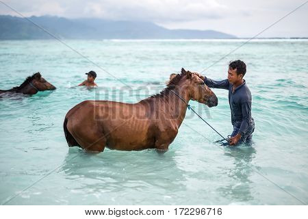 Gili Trawangan, Indonesia - 25 January 2017: men with horses in the sea on the background of the cloudy sky and mountains. Editorial photo. Horizontal.