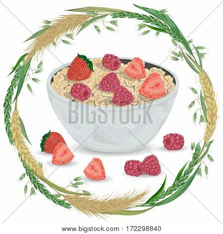 Cereal porridge in bowl with raspberry, strawberry and wreath with cereals. Barley, wheat, rye and oat. Healthy breakfast. Isolated elements. Hand drawn vector illustration