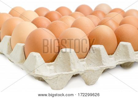 Brown chicken eggs in the cardboard egg tray closeup on a light background