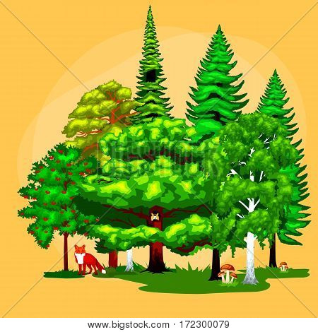 Forest green trees on grass bush in summer landscape background. Nature landscape design elements isolated with green trees, grass bush and animals. Isolated ecology natural wood trees set vector.