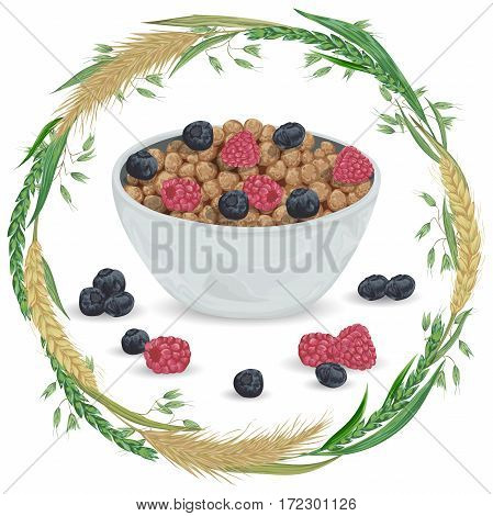 Cereal balls in bowl with raspberry, blueberry and wreath with cereals. Barley, wheat, rye and oat. Healthy breakfast. Isolated elements. Hand drawn vector illustration
