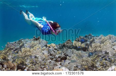 Young woman snorkeling underwater over a coral reef in a tropical resort on Vanua Levu Island Fiji. Real people copy space