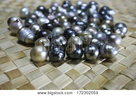 Selection Of Fiji Black Lip Oyster Black Pearls